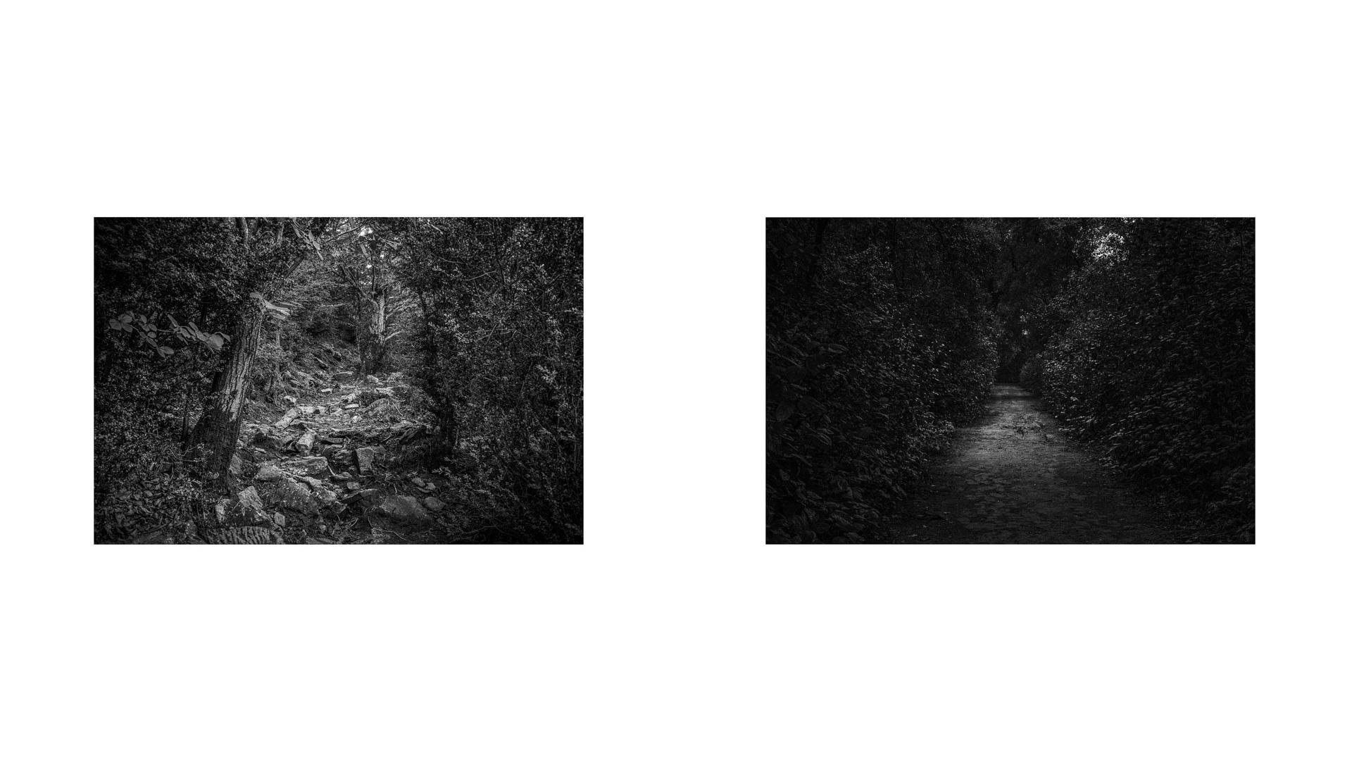 Like an Unnamed Titles Photographie Nadim Zeraïa-11--