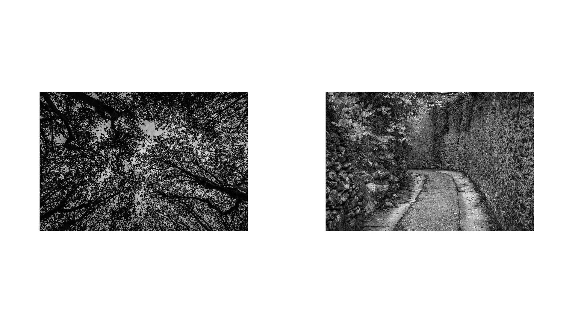 Like an Unnamed Titles Photographie Nadim Zeraïa-4
